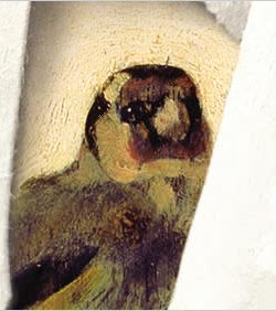 From <i> The Goldfinch</i>
