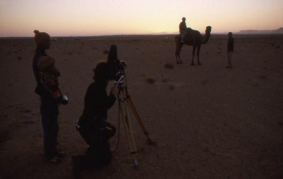 13 Camel Shot