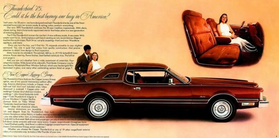 1975 Ford Thunderbird-02-03