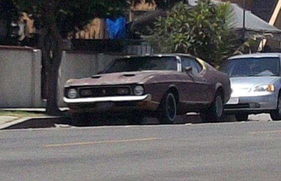 10a-Mustang