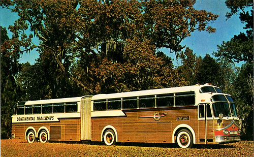 Eagle articulated bus