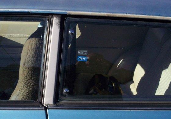 7 window-stickers