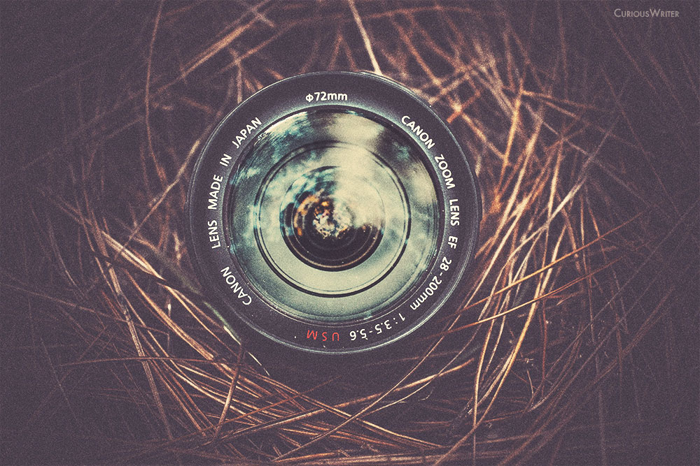 A beginner's guide to aperture - what you need to know to get awesome shots with your DSLR camera