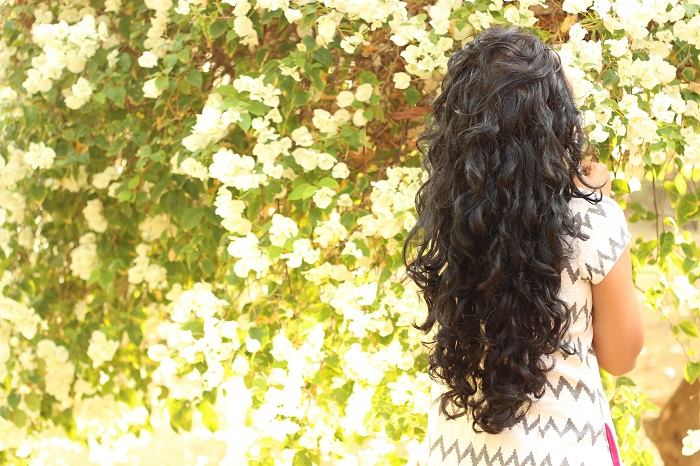 curly hair blog india (5)
