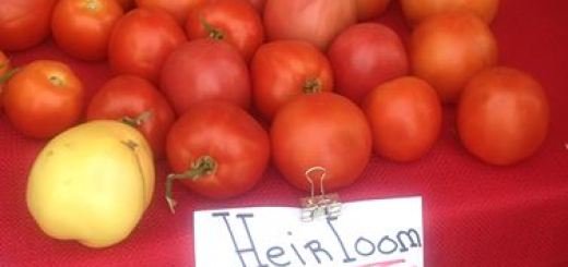 Locally grown tomatoes are just one of the items sold at The Market. (Submitted photo)