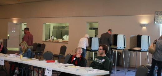 Voters visit the polls during the May primaries earlier this year. This fall, voters will see more flexibility in voting times and locations. (Photo by Keith Shepherd)