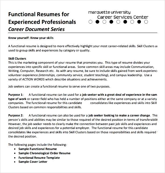 sample cv spintel - resume for experienced professionals