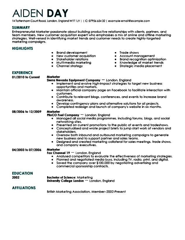 Example Of Executive Resume Cfo Resume Example P1 Executive - sample resume for retail