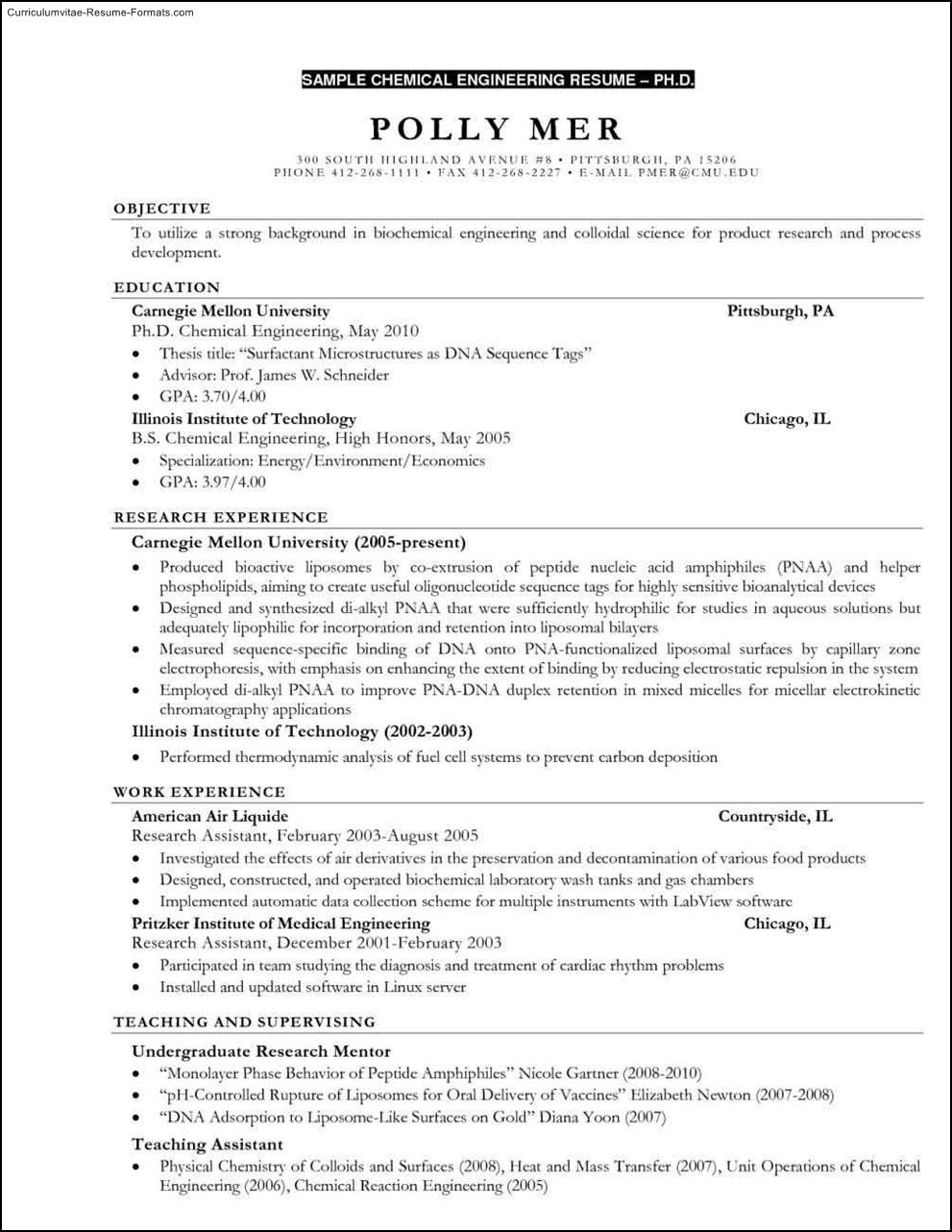 1st resume template