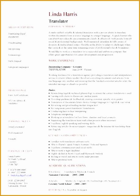cv template world bank format