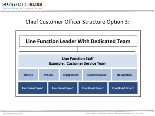 CCO Structure  Team - Option 3 Line Function Leader with a - line leader