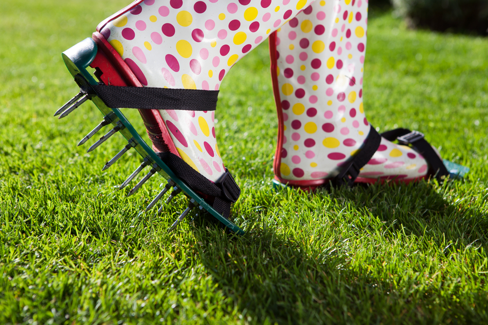Aeration 101: The Key To A Healthy, Lush Lawn
