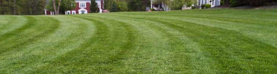 Overland Park Lawn Care Services- Custom Lawn Johnson County, KS