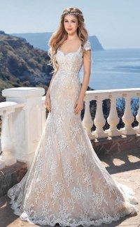 Backless Beach Wedding Gown Lace Mermaid Bride Dress ...