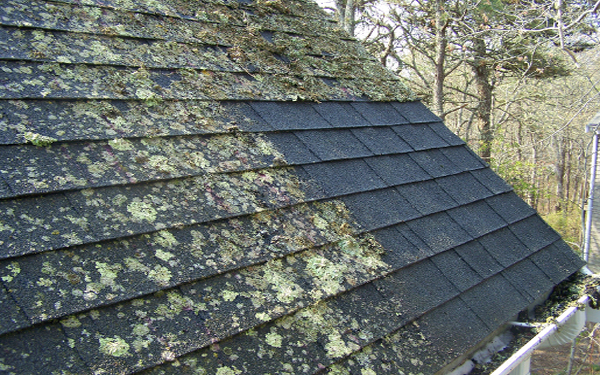 Roof Cleaning & Moss Removal