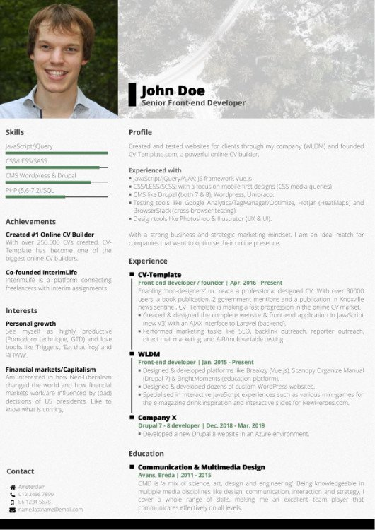 template cv professional
