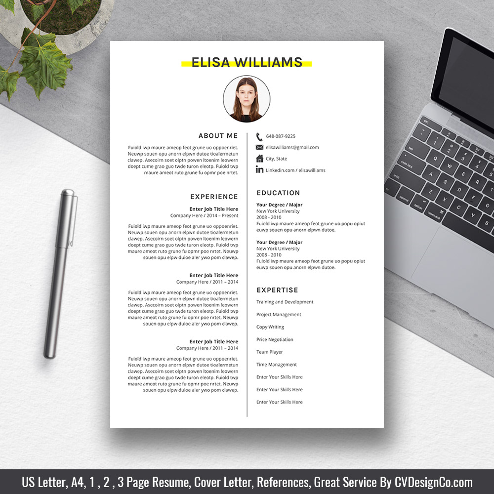 best professional cv