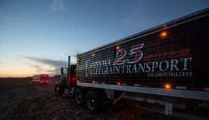 chippewa-valley-grain-transport-anniversary-grain-trailer