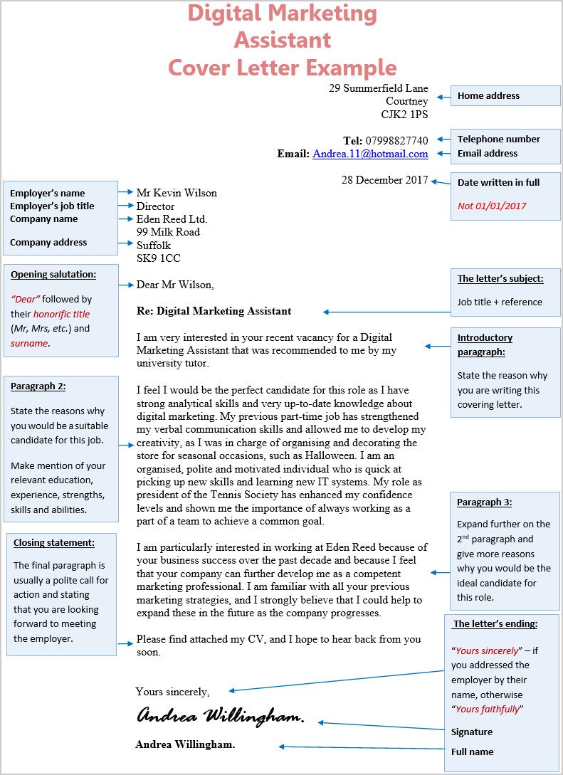 cv assistant marketing digital