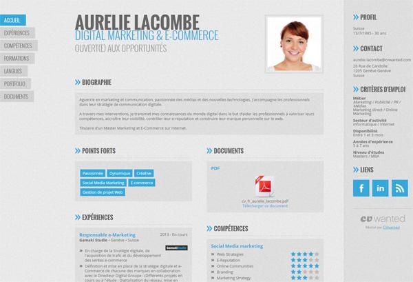 cv web design competence et activite wanted