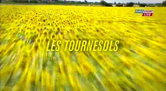 Tour in Microdose: Screencap Recap - Millar Fois! - Les Tournesols