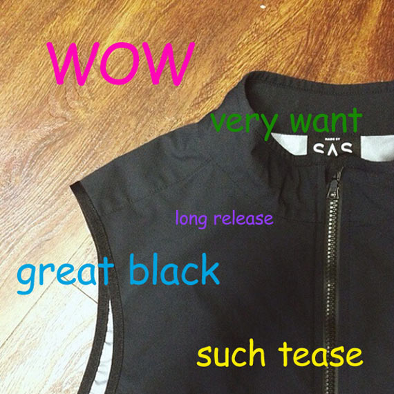 Search And State Such Tease Future Gilet
