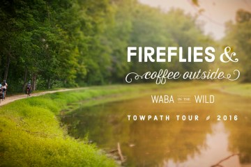 Fireflies & Coffee Outside - WABA in the Wild