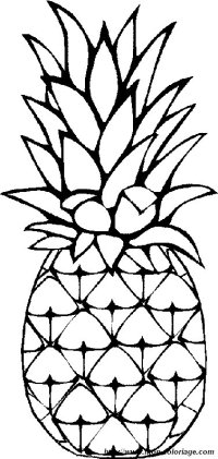 Ananas Da Colorare Adulte Livre Coloriage Ananas Dessin Au