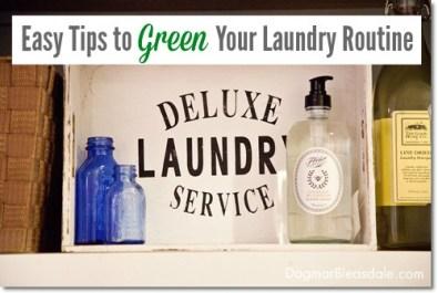 ebay green laundry routine
