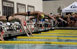 Swim Meet Dual Conferance vs. Utah
