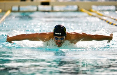 Junior Tom Shields was named 2012 NCAA Swimmer of the Meet after winning two individual NCAA titles and taking part in a first-place relay race.