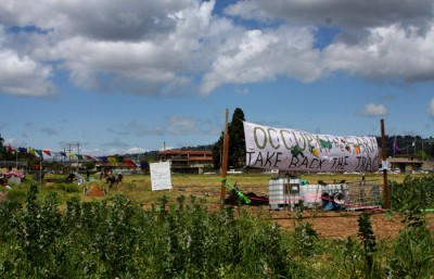 Occupy Farm