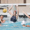 waterpolo_matt-lee_calvusc