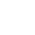 Finding your niche -Mary Zhou