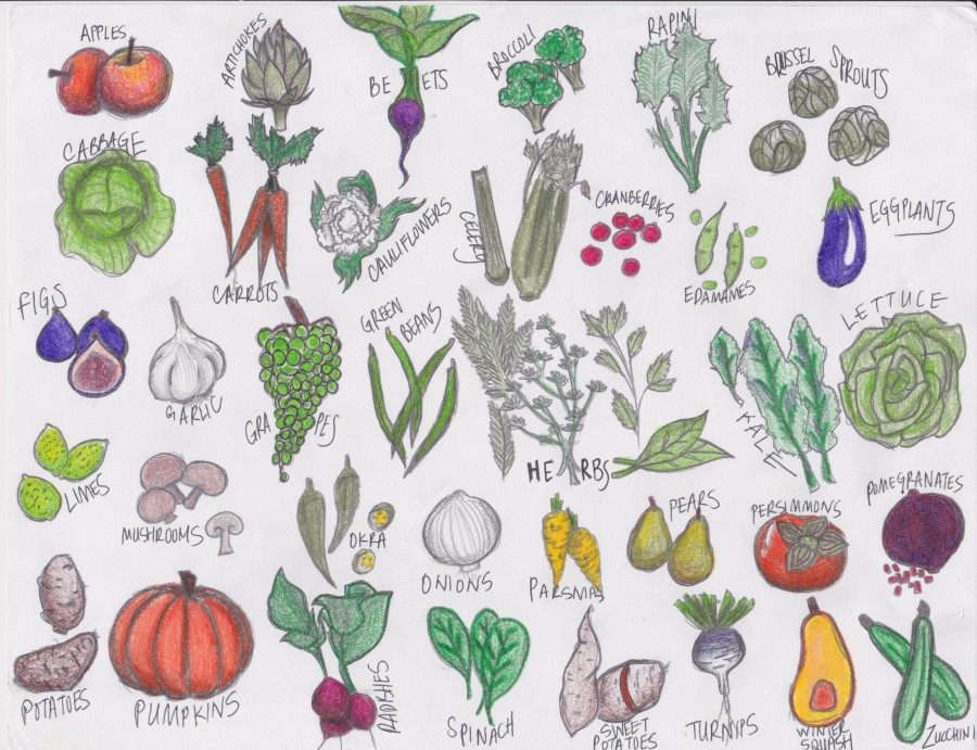 What are seasonal fruit and Vegetables?