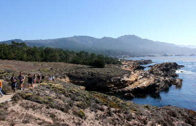 IB 157 students walk along the coast to the Monterey cypress grove at Point Lobos State Reserve.