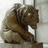 Bear near Doe Library
