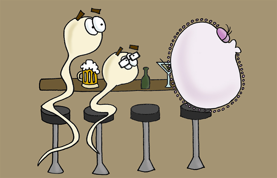 sperm-cartoon_MDrummond(color)