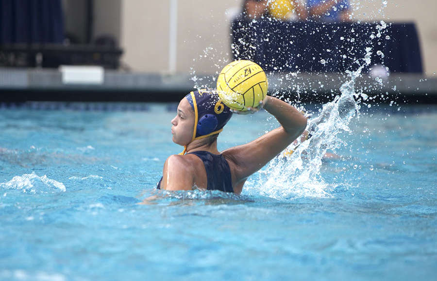 water polo Essay Examples
