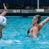 waterpolo_pdown