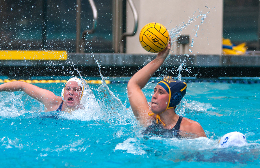 water polo essays Biography of marco polo essay comparing soccer and water polo essay examples 730 words | 3 pages like soccer, water polo is extremely popular within europe.