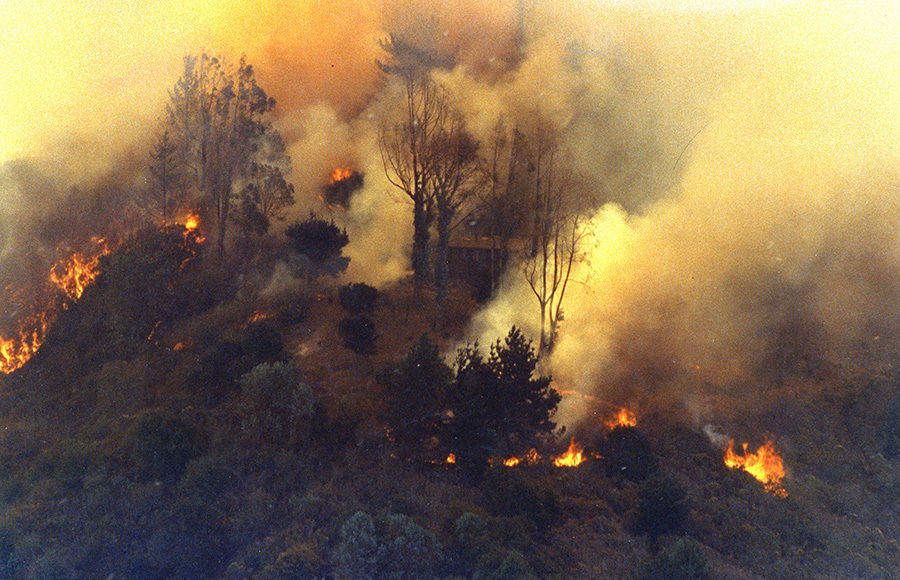 fire1_Claremont Canyon Archives_courtesy