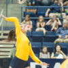 volleyball_liannefrick_file
