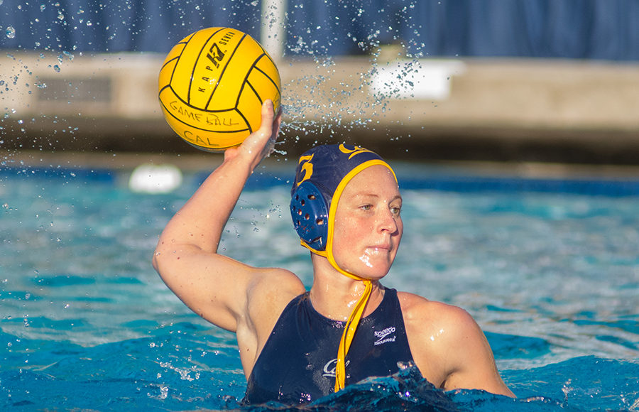 water polo essay History of polo polo is arguably the oldest recorded team sport in known history, with the first matches being played in persia over 2500 years ago.