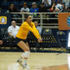 volleyball_lfrick_file-copy