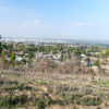 whittier_ca_seen_from_hellman_park_peppergrass_trail