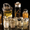 parasites_smithsonianinstitution_courtesy-copy