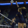 volleyball_ketkisamel_file-copy