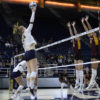 volleyball_austinshipley_staff-copy
