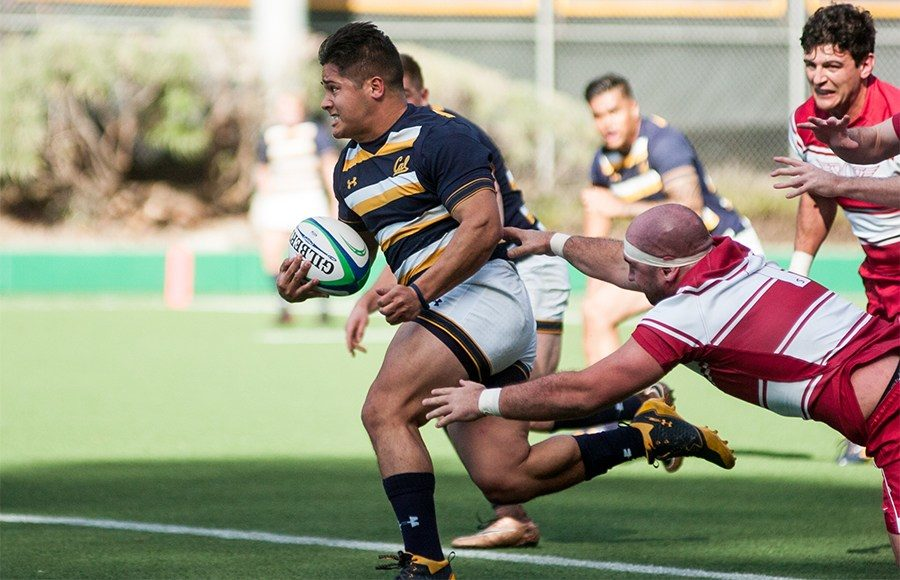 rugby_phillipdowney_file-2
